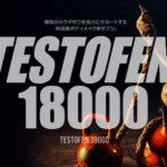 テストフェン180001